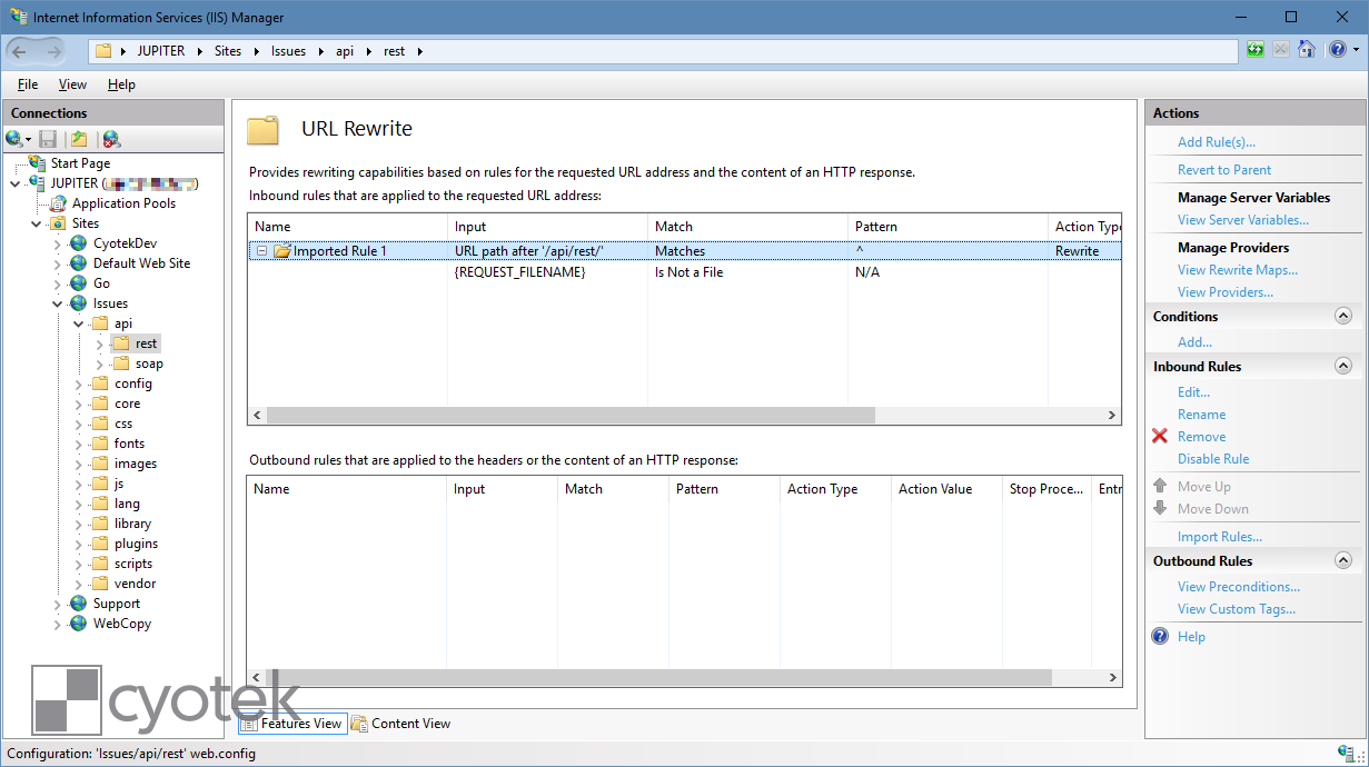 Using the MantisBT REST API when hosted on IIS - Articles