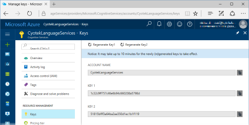 Manage keys page in the Azure Portal