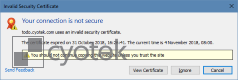 An example of WebCopy prompting how to handle an invalid certificate